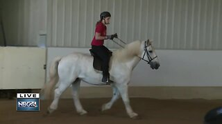 Helping Horses help people event this weekend