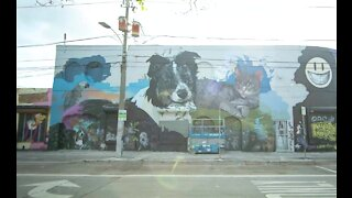 Timelapse video of Ultimate Pet Project mural in Wynwood