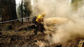 Air Quality Alerts Issued In California Due To Wildfires