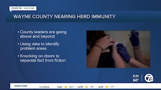 Tackling vaccine hesitancy in Wayne County