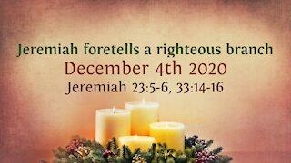 Jeremiah foretells a righteous branch - Advent Devotional