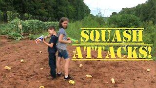 Squash Attacks
