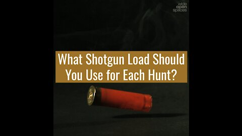 What Shotgun Load Should Be Used for Each Hunt?