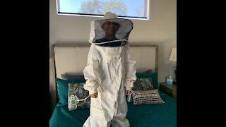 Honey Bees at my Ranch Home