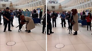 Adorable moment police dog becomes excited meeting mcgruff the crime dog