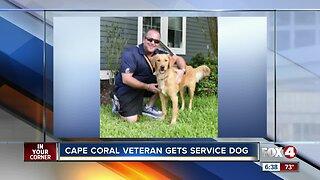 A Cape Coral veteran receives a service dog for PTSD