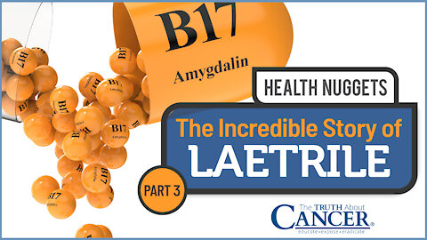The Truth About Cancer Presents: Health Nuggets - The Incredible Story of Laetrile   Part 3