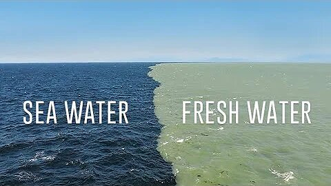 Fresh Water Meets Sea Water – Boundary Explained😰😰
