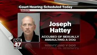 Court hearing for Hattey today