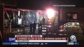 At least three horses killed in Wellington barn fire