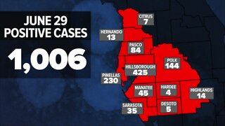 Breaking down Tampa Bay COVID-19 cases