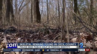 Skeletal remains found in Cecil County