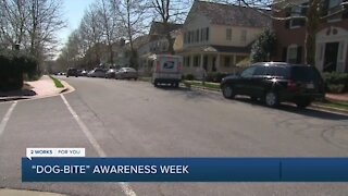 Dog Bite Awareness Week: How to keep your dog and mail carrier safe