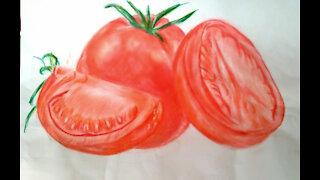 drawing tomatom colors