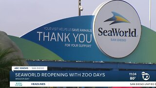 Seaworld reopening with zoo days