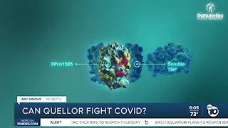 In Depth: Can Quellor fight COVID-19?