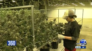 Colorado bill would allow for public investment in the marijuana industry
