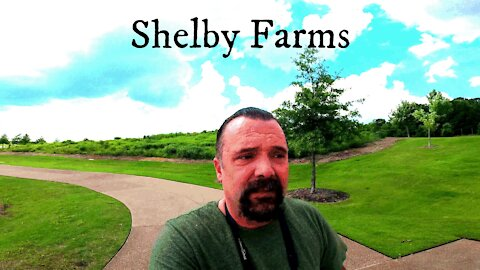 Shelby Farms Tennessee