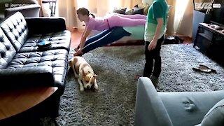 """Cette famille échoue royalement au défi """"Plank That Song"""""""