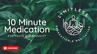 Chakra Meditation Balancing Healing Music- 10 Minute Meditation