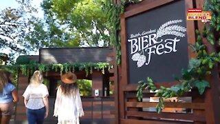 Busch Gardens Bier Fest  Morning Blend
