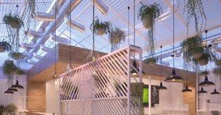 Vegas marijuana dispensary Planet 13 announces expansion plans