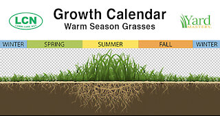 Warm Season Spring Lawn Tips