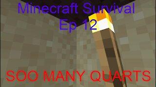Minecraft Survival (Ep 12) SOO MANY QUARTS!!
