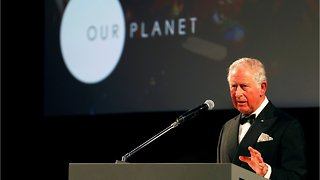 UK Royals Attend A Netflix Premiere