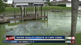 Water quality update in Cape Coral