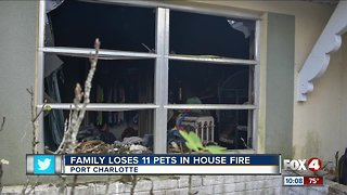 Family loses 11 pets in Charlotte County house fire