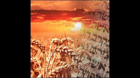 The Feast of Shavuot (Pentecost)