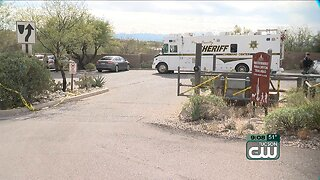 Pima Canyon Trail closed while mountain lions trapped