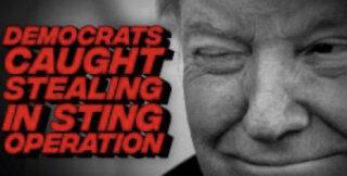 "President Trump ballot ""watermark"" sting operation"