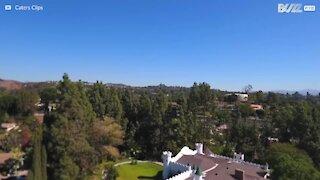 Middelaldrende slott verdt millioner på salg i California