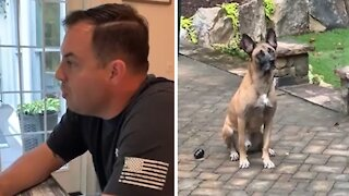 Retired K9 doesn't know what to do with his free time