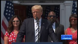 Trump speaks out against Big Tech