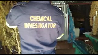 SOUTH AFRICA - Pretoria - Massive Drug Bust in Hammanskraal (Video) (eEG)
