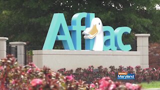 Aflac - Corporate Social Responsibility