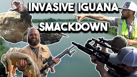 HUNTING GIANT IGUANAS WITH AIR GUNS IN SOUTH FLORIDA WITH PYTHON COWBOY