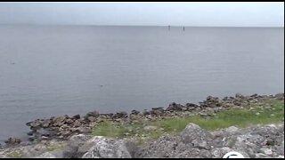Concern over algae returning to Lake Okeechobee