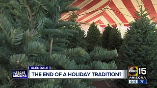 Could online Christmas tree sales impact local companies?