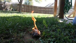 Easy Fire Starter