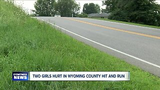 Police hunt for hit-and-run driver who injured two girls & killed a dog