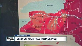 Send us your fall foliage pics!