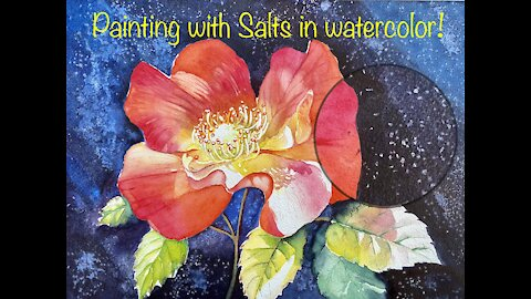 Rose Painting - With A Drop of Salt - Watercolor Painting - Salt Technique