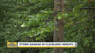 Storm damage in Cleveland Heights