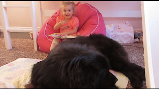 """Toddler """"reads"""" Cinderella to her giant dog and it's hilariously adorable"""