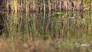Second child dies in canal crash