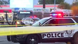 Pedestrian killed in crash near Nellis, Charleston